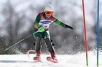 2018 PyeongChang - Para / Alpine skiing / GS & SL