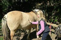 Mädchen beim Reitunterricht auf Ponyhof, Mädchen striegelt das Fell ihres Reitponys, Reiten, Reiterhof, Gestüt