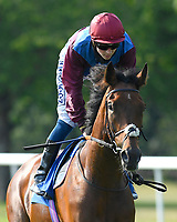 Jack d'Or ridden by David Probert goes down to the start of The AJN Steelstock Beckie Lawrence Handicap  during Horse Racing at Salisbury Racecourse on 9th August 2020
