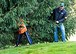 EEMNES - Bal tussen de bomen en takken.  Finales National Golfsixes League, georganiseerd door PGA Holland.  COPYRIGHT KOEN SUYK