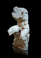 The celebrated Greek statue known as 'The Belvedere Torso', possibly of Greek hero Ajax, signed by Athenian neo-Attic sculptor Apollonios, ist century BC, inv 1192, Pope Clement collection, Vatican Museum Rome, Italy,  black background