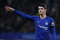 Alvaro Morata of Chelsea during Chelsea vs Derby County, Caraboa Cup Football at Stamford Bridge on 31st October 2018
