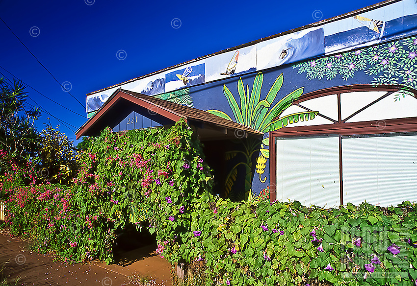 A mural-painted home includes windsurfing on Baldwin Avenue in Maui's Pai'a, known as the windsurfing capital of the world.