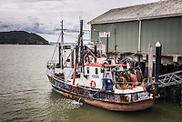 Fishing boat in Mangonui Harbour, Northland Region, North Island, New Zealand