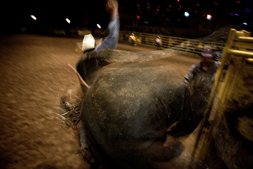 David Gonzales breaks out of the chute at Cowboys Dancehall in San Antonio, Texas. He was bucked off hard seconds later. July 27, 2007.