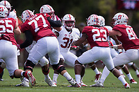 STANFORD, CA -- April 15, 2017<br /> Stanford Football Cardinal and White game. Cardinal (offense) wins over White (defense) 37-30.