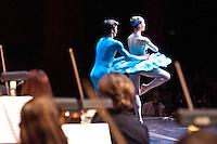 Houston Symphony Weatherford Family Concert Series presents Princes & Princesses