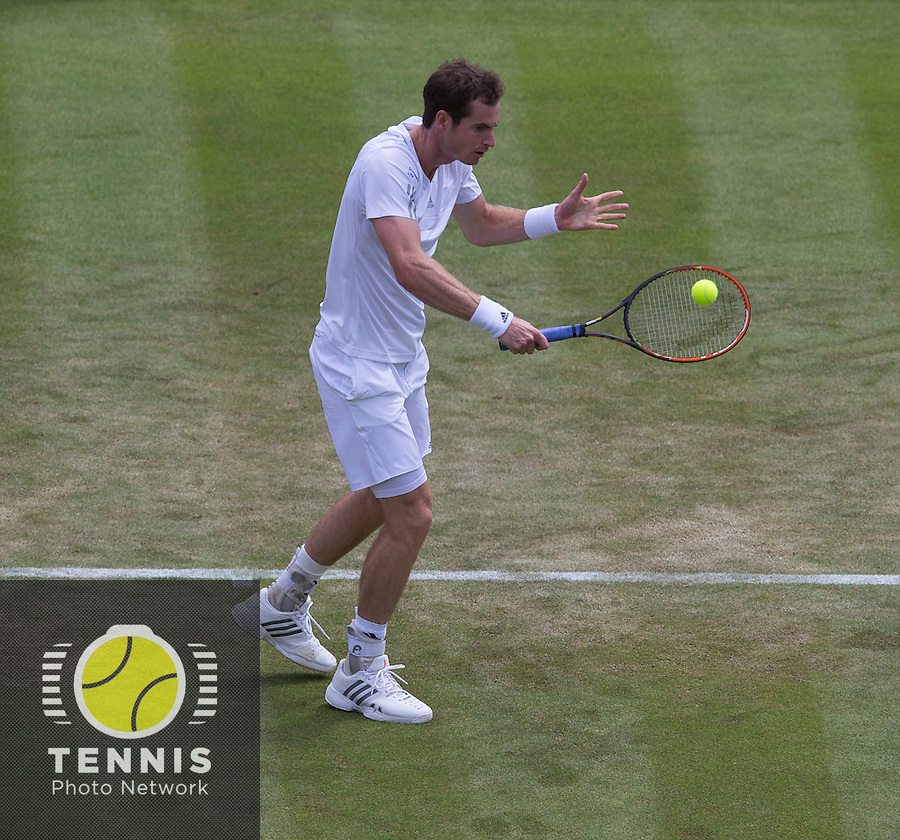ANDY MURRAY (GBR)<br /> <br /> The Championships Wimbledon 2014 - The All England Lawn Tennis Club -  London - UK -  ATP - ITF - WTA-2014  - Grand Slam - Great Britain -  25th June 2014. <br /> <br /> © Tennis Photo Network