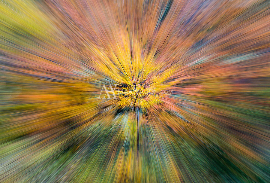 We were fortunate the spend time in Torres del Paine when the autumn colors were still in peak form.  This is a long exposure zoom, with the effect created in-camera while taking the shot (rather than in post-processing).