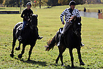 Jockey John Barrett and his horse Star (right) out beats Jockey Lauren Berner and her horse Diamond in The Heavy Horse Race during the Genesee Valley Hunt Races held at The Nations Farm in Geneseo, NY.