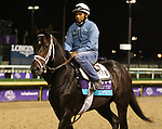 November 01, 2018 : Opry in preparation for the Breeders' Cup on November 01, 2018 in Louisville, KY.  Candice Chavez/ESW/CSM