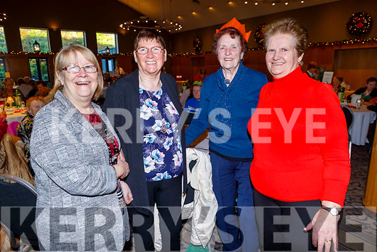 Ann Walsh, Noreen Piggott, Mary Casey and Kathleen Hussey attending the Causeway Active Retirement Christmas Party in the Ballyroe Heights Hotel on Sunday
