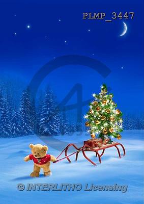 Marek, CHRISTMAS ANIMALS, WEIHNACHTEN TIERE, NAVIDAD ANIMALES, teddies, photos+++++,PLMP3447,#Xa# in snow,outsite,