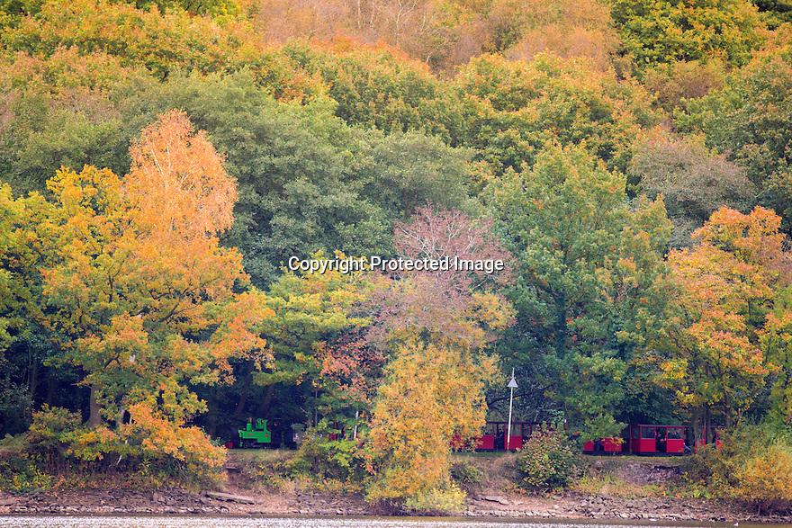 §27/10/16<br /> <br /> Surrounded by stunning autumn colour, a narrow-gauge steam train makes its way along the Rudyard Lake Steam Railway along the bank of Rudyard Lake near Leek, Staffordshire.<br /> <br /> All Rights Reserved: F Stop Press Ltd. +44(0)1773 550665   www.fstoppress.com