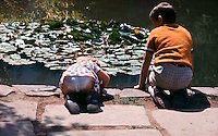 A young boy and girl bend over a pond to try and catch some fish. A real need for concentration.