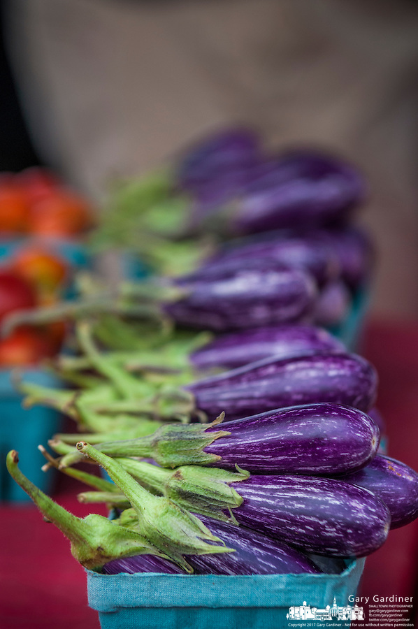 Fresh eggplant for sale  at a local farmers market.