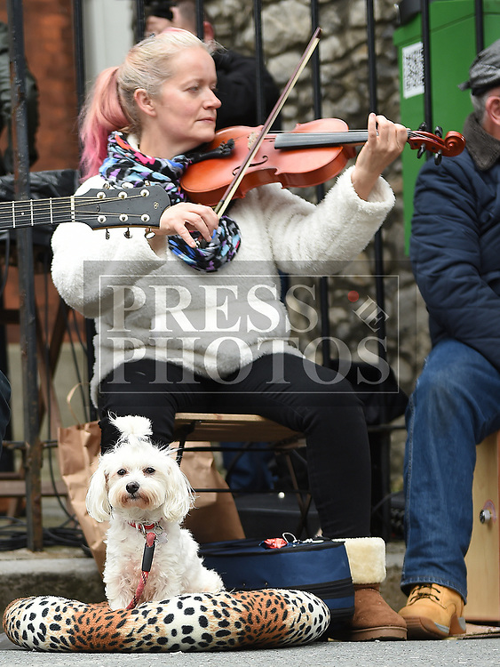Geraldine White performing at the Music at the Gate. Photo:Colin Bell/pressphotos.ie