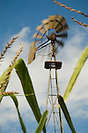 Downey Well Company windmill collection, Merna, Nebraska:..Baker Monitor