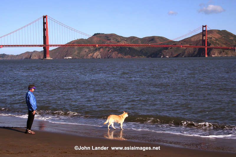 Golden Gate Bridge, Walking the dog at Baker Beach