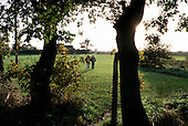 The village green and school playing fields at Grazeley, Berkshire. The village is at the centre of an area between Reading and Basingtoke dubbed Readingstoke by campaigners who fear massive overdevelopment of the area.