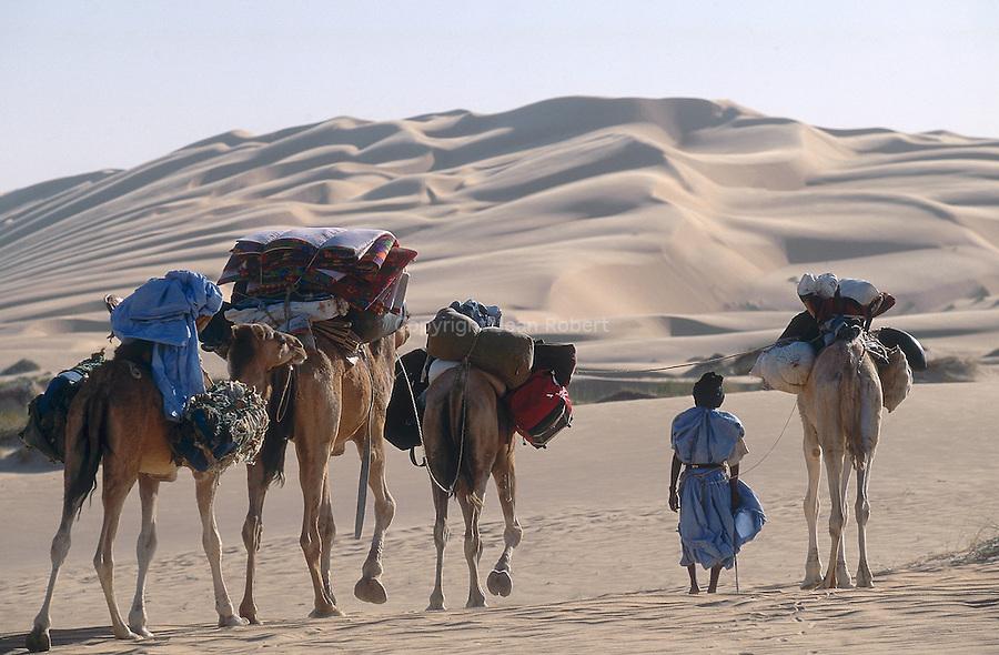 Dromadaires et chameliers dans les dunes de l'Amatlich. Le dromadaire, animal du désert, est la monture privilégié des Hommes dans les zones désertiques. Mauritanie. Afrique. Dromedary and camel drivers in the dunes of the Amatlich. Mauritania. Africa.