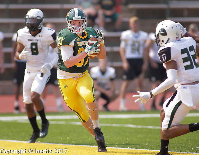 SPEARFISH, SD: SEPTEMBER 2: Zane Lindsey #87 of Black Hills State scores a touchdown against Adams State during their game Saturday at Lyle Hare Stadium in Spearfish, S.D.   (Photo by Dick Carlson/Inertia)