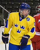 Filip Gunnarsson (Sweden - 18) - Sweden defeated the Czech Republic 4-2 at the Urban Plains Center in Fargo, North Dakota, on Saturday, April 18, 2009, in their final match of the 2009 World Under 18 Championship.
