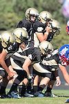 Palos Verdes, CA 09/24/10 - Brock Dale (Peninsula #7) in action during the Serra-Peninsula varsity football game at Peninsula High School.