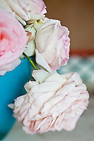 Detail of the abundant head of a freshly cut light pink rose in a blue vase