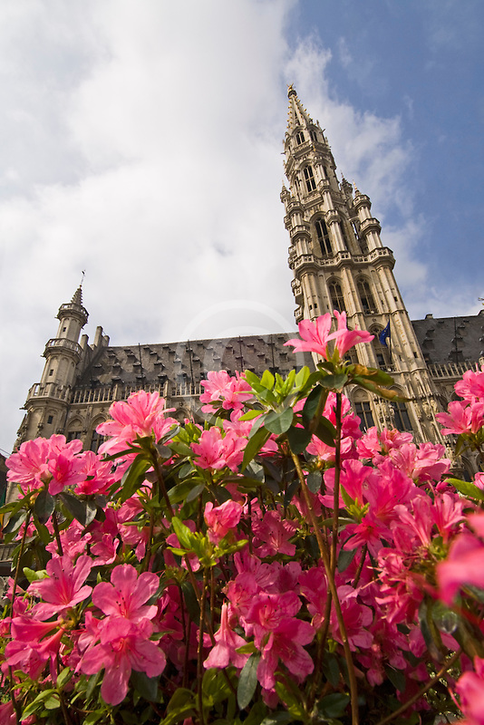 Belgium, Brussels, Town Hall, Grand Place, spire with flowers in foreground