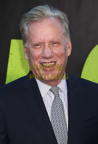 James Woods.The World Premiere of 'Savages' held at The Grauman's Chinese Theatre in Hollywood, California, USA..June 25th, 2012.headshot portrait suit white black tie blue   smiling .CAP/ADM/RE.©Russ Elliot/AdMedia/Capital Pictures.