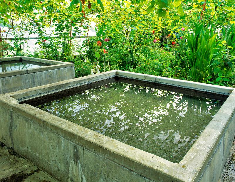 Bathing pools in greenhouses at Manley hotspring, Alaska