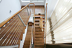 Zach, the dog, runs up the stairs in the home of Ron Werner and Jim Waring, owners of HW Home, in Denver.