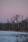 Frozen wilderness lake under a full moon