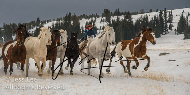 Snow riding Cowboys working and playing. Cowboy Cowboy Photo Cowboy, Cowboy and Cowgirl photographs of western ranches working with horses and cattle by western cowboy photographer Jess Lee. Photographing ranches big and small in Wyoming,Montana,Idaho,Oregon,Colorado,Nevada,Arizona,Utah,New Mexico. Cowboys in winter photography