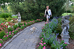 """Homeowner Margaret Lowery with Maddie, an eight year-old mixed breed female in the lead, on a path that takes walkers from the front of the house to the back. """"At Home"""" with Margaret Lowery in her Lake Christine Drive home in Belleville, IL on July 24, 2019. <br /> Photo by Tim Vizer"""