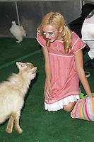 SANTA MONICA, CA - OCTOBER 27: Peyton List at the Keep A Child Alive 2012 Dream Halloween Party at Barker Hangar on October 27, 2012 in Santa Monica, California.  Credit: mpi20/MediaPunch Inc. /NortePhoto