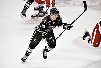 HERSHEY, PA - JANUARY 05: Hershey Bears right wing Beck Malenstyn (13) skates through the neutral zone during the Grand Rapids Griffins vs. Hershey Bears AHL game at the Giant Center in Hershey, PA. (Photo by Randy Litzinger/Icon Sportswire)