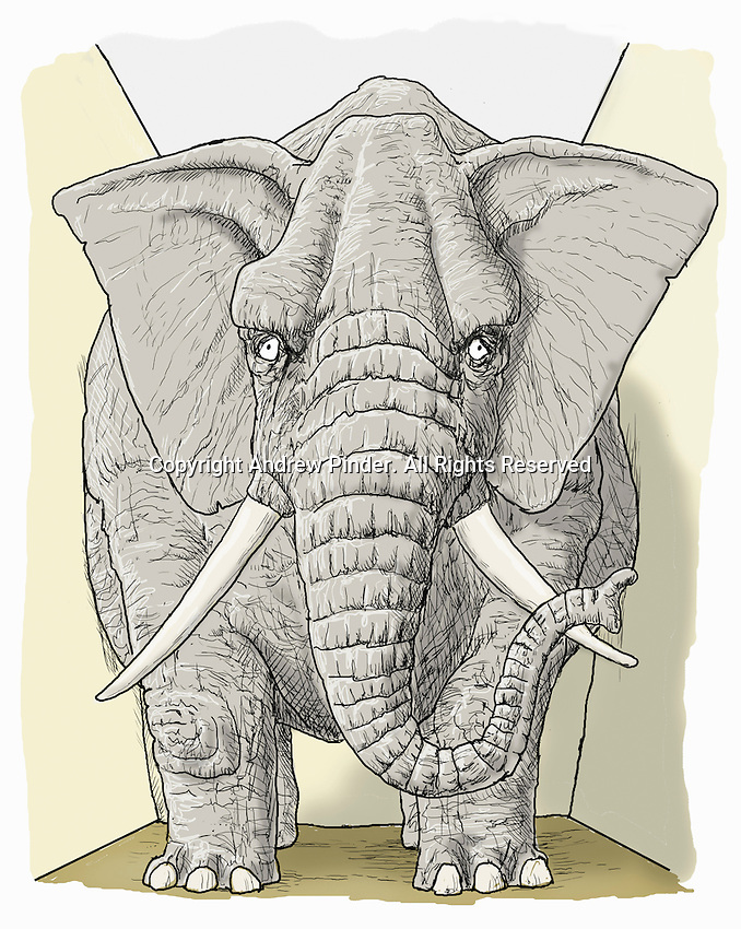 Large elephant in small room