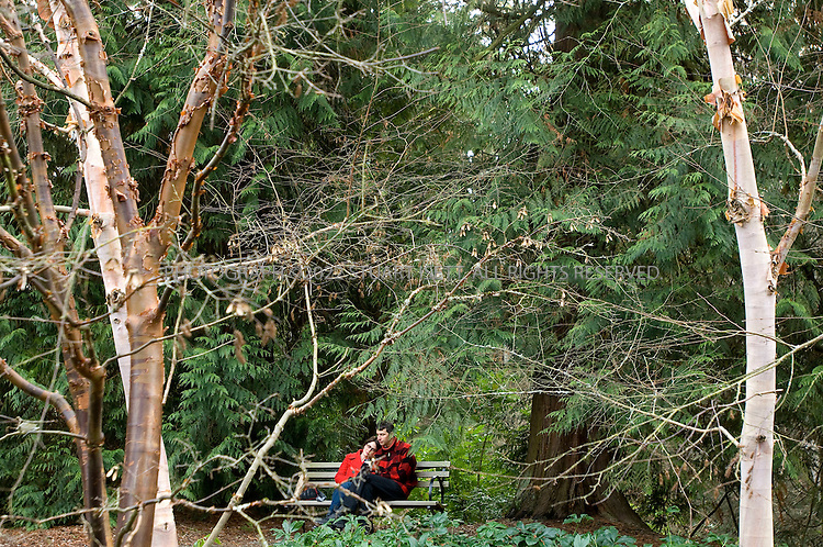 1/1/2008--Seattle, WA, USA..A couple sit on a park bench, behind maple trees, in the Winter Garden  in Washington Park Arboretum in  Seattle. ©2007 Stuart Isett. All rights reserved