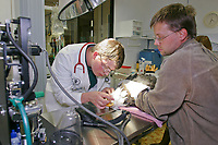 Veterinarian Scott Ford, Alaska Raptor Center, provides medical treatment to injured bald eagles and other birds. The Alaska Raptor Center's 17-acre campus borders the Tongass National Forest, a temperate coastal rainforest, and the Indian River in Sitka, Alaska,