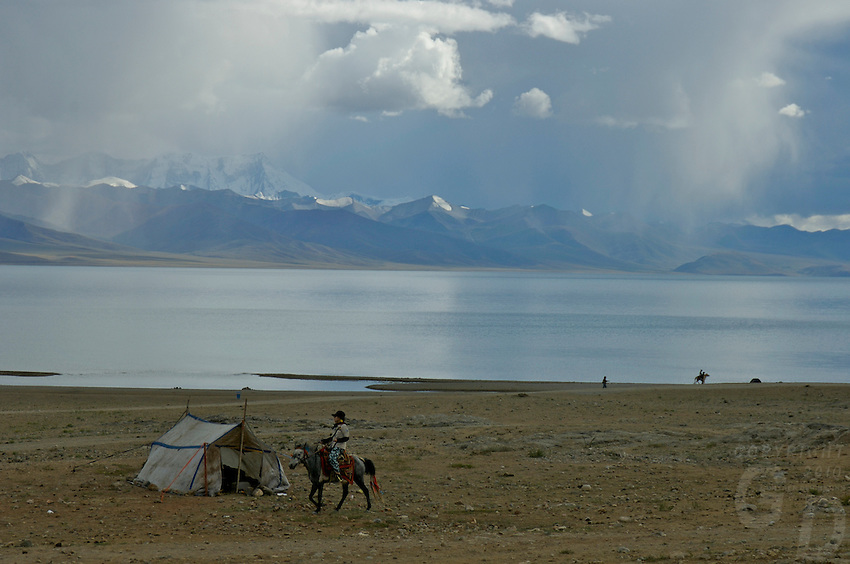 """Horse and rider at the edge of Namtso Lake and storm approching,Namtso, another holy lake in Tibet, is located near Damxung. 4718 meters (15475 feet) above sea level and covering 1900 square kilometers (735 square miles), the lake is the highest saltwater lake in the world and the second largest saltwater lake in China. The snow capped Mt. Nyainqentanglha, considered as the son of Namtso and leader of sacred mountains, soars up to sky beside her. Singing streams converge into the clean sapphire blue lake, which looks like a huge mirror framed and dotted with flowers..The Namtso Lake is held as """"the heavenly lake"""" or """"the holy lake"""" in northern Tibet. .Respected as one of the three holiest lakes in Tibet, the Namtso Lake is the seat of Paramasukha Chakrasamvara for Buddhist pilgrims. In the fifth and sixth month of the Tibetan calendar each year, many Buddhists come to the lake pay homage and pray. Deep tracks are worn into the lakeshore due to this activity. In history, monasteries stood like trees in a forest around the site, attracting large numbers of pilgrims as eminent monks in Buddhist temples extended Buddhist teachings...Buddhists believe Buddhas, Bodhisattvas and Vajras will assemble to hold religious meeting at Namtso in the year of sheep on Tibetan calendar. It is said that walking around the lake at the right moment is 100,000 times more efficacious than that in normal years. That's why thousands of pilgrims from every corner of the world come to pray at the site, with the activity reaching a climax on Tibetan April 15...Walking around the lake takes a week. Ritual walkers love to burn aromatic plants to raise smoke on Auspicious Island [explain this a little] and throw a piece of hada scarf into the lake as a token of fulfilled wishes. If the scarf sinks, it implies ones wish is accepted by the Buddha; if the scarf flows on the water or only half sinks, it means one has failed to be honest and something unhappy may lie ahead...On the four sides of the l"""