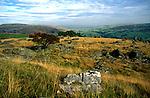 limestone scenery, Yorkshire Dales national park, England