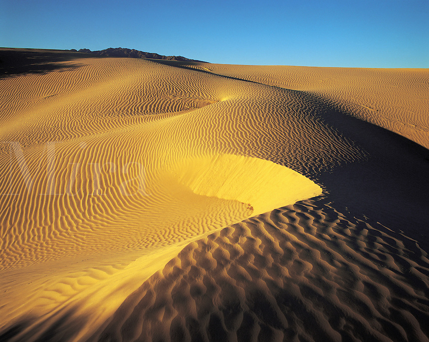 Early morning light on sand-dunes in Death Valley, distant tops of the Panamint Mountains just visible; California, US