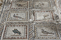 Detail of mosaic in the House of the Birds, Italica, Seville, Spain, pictured on December 28, 2006, in the morning. The House of the Birds is named for its central mosaic. It is the most Italian in style of the houses in Italica. Italica was founded by Scipio Africanus in 206 BC as a centre for soldiers wounded in the Battle of Ilipa, a defeat for Carthage during the Punic Wars, and became a military outpost. The name signifies that the original settlers were from an Italian regiment. It was one of the first cities in Roman Hispania and was the birthplace of two Roman Emperors: Trajan (53-117 AD) and Hadrian (76-138 AD). The city declined after the fall of the Roman Empire. Picture by Manuel Cohen.