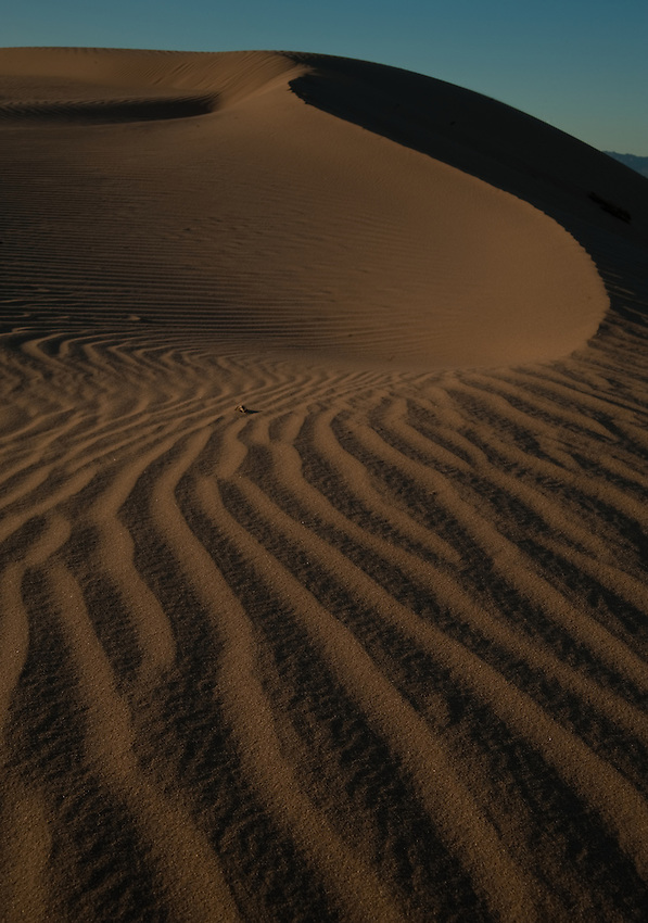 Late light on the dunes, Algodones Dunes, California
