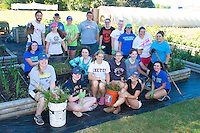 Salve Regina Service Plunge volunteers at the Methodist Community Gardens in Middletown.