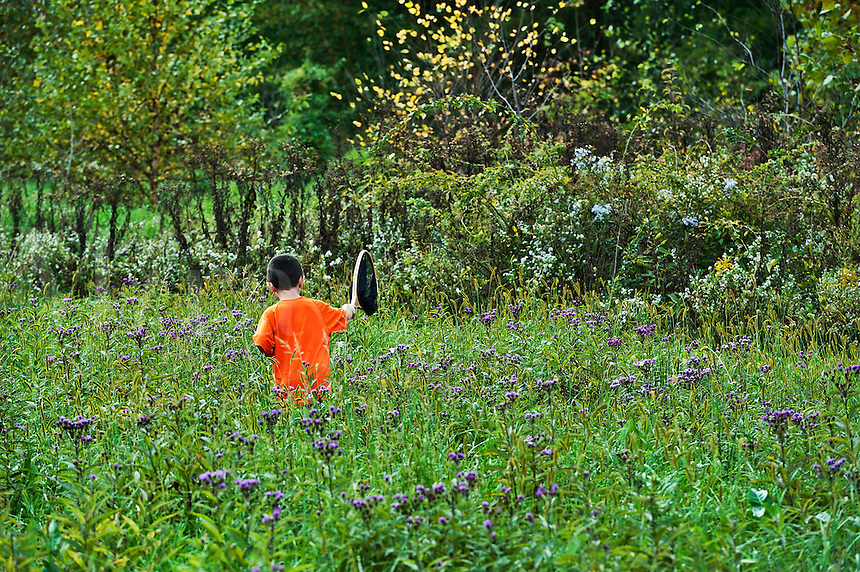 Boy catching butterflies with net.