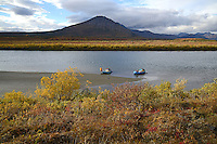 Eric Downey guards the rafts along the Sheenjek River, while the remainder of his party hikes to Kuirzinjik Lake (Lobo Lake) in Alaska's Arctic National Wildlife Refuge in late August, which is the peak time for fall colors. MR