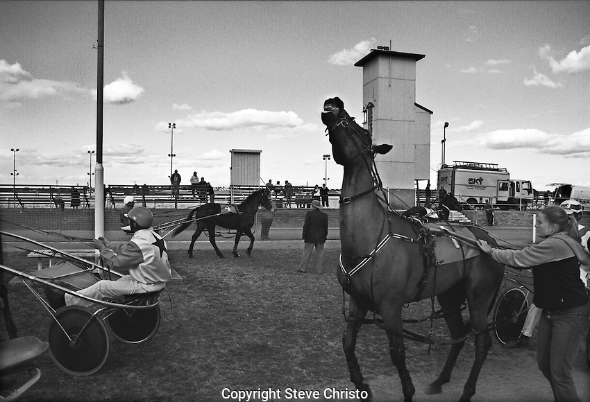Hawksbury Paceway is a harness racing track in Richmond, New South Wales. It was a half-mile track . Photo:(Steve Christo)